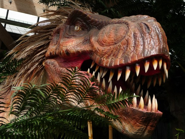 Dinos are back to Universeum !