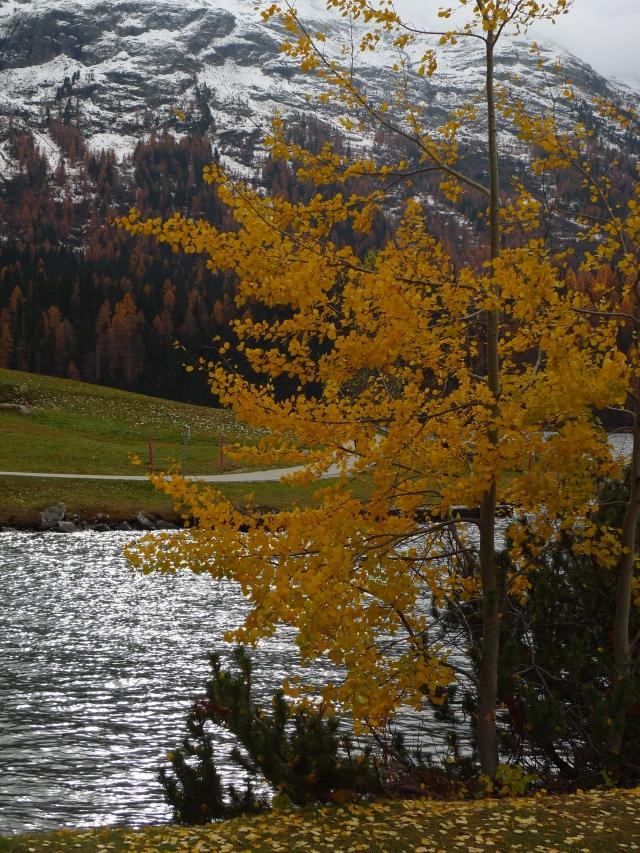 Lago di St. Moritz (vikingandre.com)