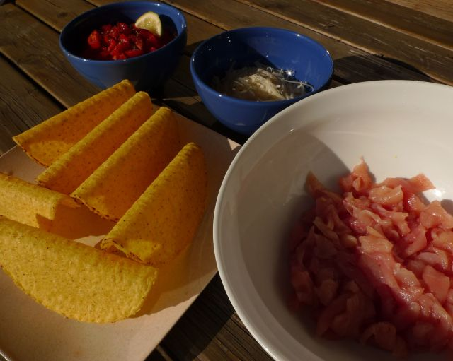 Ingredienti per tacos (vikingandre.com)
