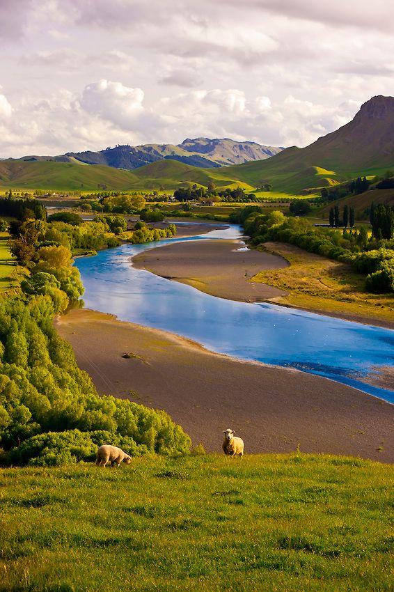 Nuova Zelanda (Pinterest)
